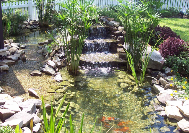 Aquatic Designs Ponds For Your Backyard Or Property In Florida